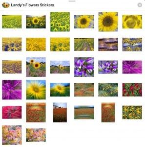 Elliott Landy Flower stickers