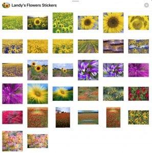 Landy IOS Stickers